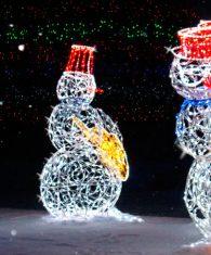Световые фигуры из дюралайта в Ташкенте